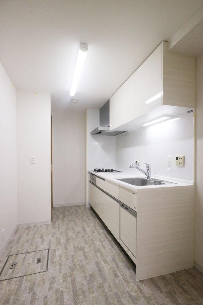 ガスコンロ、人造大理石のカウンター。浄水器内蔵ハンドシャワー水栓、食器洗い乾燥機付き。ホーロー素材のパネル壁。